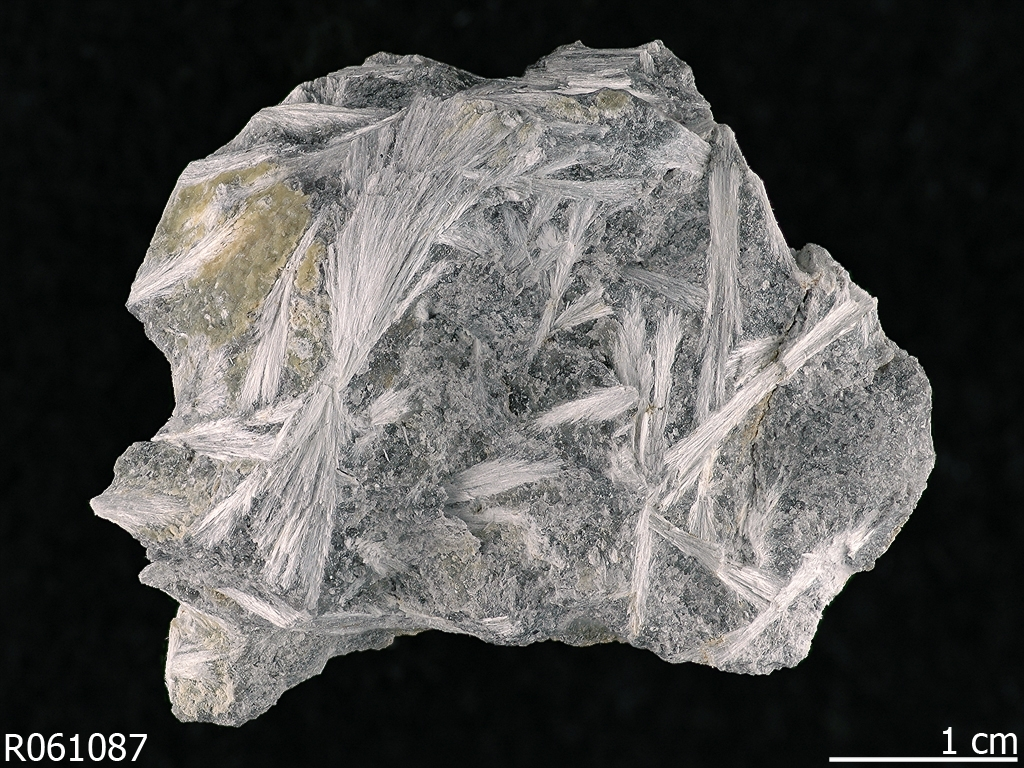the legal and regulation regarding mining of asbestos These regulations are for the convenience of the user and no exposures to asbestos in all industries will be repealed by operation of law on the.